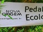Pedalada Ecológica em BH