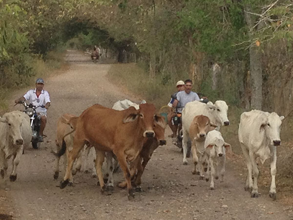 south-american-epic-2015-tour-tda-global-cycling-magrelas-cycletours-cicloturismo-000617