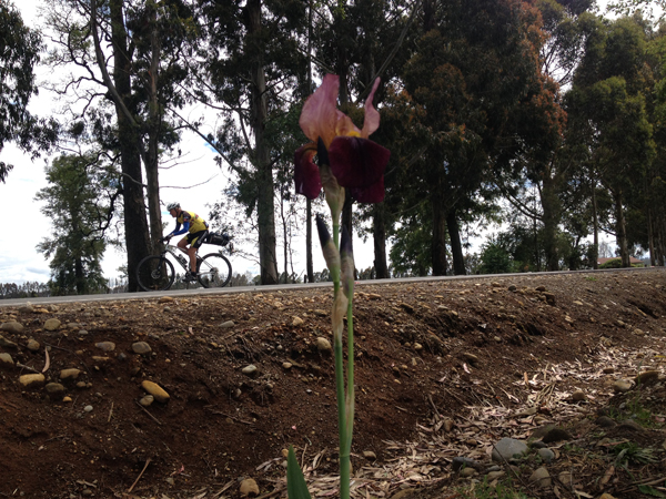 south-american-epic-2015-tour-tda-global-cycling-magrelas-cycletours-cicloturismo-005500